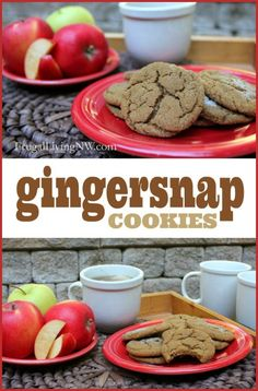 The BEST Gingersnap Cookie Recipe -- Chewy, flavorful, simply delicious!