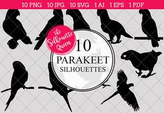 Dachshund Dog silhouette vector grap by The Silhouette Queen. Need a silhouette of a Doxie for your next project, invitation, or website? Here are 10 great ones! Crow Silhouette, Silhouette Clip Art, Silhouette Images, Animal Silhouette, Silhouette Studio, Beagle Dog, Dachshund Dog, Animal Outline, Parakeet Bird