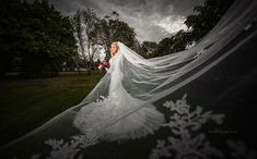 Sunshine Coast Wedding Photographer, Tom Hall loves weddings north of Brisbane and talks about why it's an amazing choice for couples to have their wedding. Perfect Image, Perfect Photo, Love Photos, Cool Pictures, Cut Above The Rest, Sunshine Coast, Gold Coast, Wedding Photos, Wedding Photography