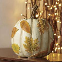 White Leaves Pumpkin $24.99