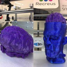Aivot Frankensteinille tulostettu Recreusin joustavasta filamentista Frankenstein, 3d