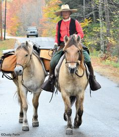 Lady long rider Bernice Ende and her horses will cover 8,000 miles over two and a half years.