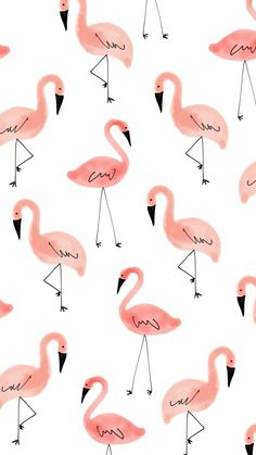 Flamingos Wallpapers for whatsapp - Hintergrundbilder iphone - Wallpaper Pastel, Flamingo Wallpaper, Cute Patterns Wallpaper, Iphone Background Wallpaper, Aesthetic Pastel Wallpaper, Iphone Backgrounds, Galaxy Wallpaper, Disney Wallpaper, Cartoon Wallpaper