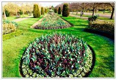 Springtime in Regent's Park, Tourism London, Regents Park London, Spring Time, Vineyard, Outdoor Decor, Vine Yard, Vineyard Vines