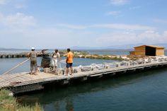De vissers van de cooperatie halen hun visvallen leeg.