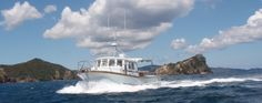 Hooked on Barrier Fishing Charters and Sightseeing Tours, Great Barrier Island, Hauraki Gulf, New Zealand