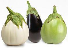 Πώς καλλιεργώ μελιτζάνες - Οδηγίες & Συμβουλές - kalliergo.gr