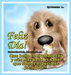 Feliz Día Que bello es el amanecer y aún más bello es saber que somo especiales para Dios.