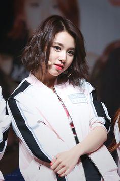 Chaeyoung   Twice