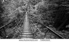 Картинки по запросу rope bridge stock photo monochrome