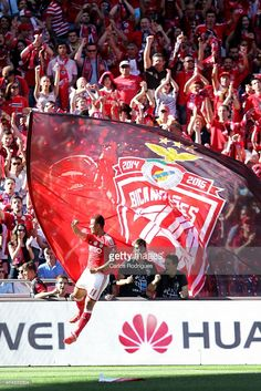 Benfica's forward Lima celebrates scoring Benfica's first goal during the Primeira Liga match between Benfica and Maritimo at Estadio da Luz on May 23, 2015 in Lisbon, Portugal.