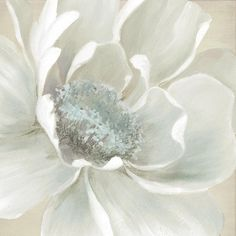 Shop for Portfolio Canvas Décor Winter Blooms II by Carol Robinson Wrapped Canvas Wall Art. Get free delivery On EVERYTHING* Overstock - Your Online Art Gallery Store! Get in rewards with Club O! Canvas Art Prints, Painting Prints, Canvas Wall Art, Painting Art, Peony Painting, Arte Floral, Floral Wall, Watercolor Flowers, Watercolor Art