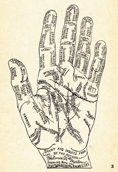 -- palmistry #Anthropologie #pintowin