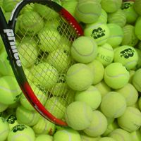 Who ever knew that there was a lot of decisions involved in picking out a tennis ball? After all, they are green or yellow and fuzzy. The biggest decision that you would think you should have to make is picking the color that you wa Tennis Lessons, Tennis Tips, Tennis Online, Drop Shot, Tennis Elbow, School Sports, Play Tennis, Sports Games, Rackets