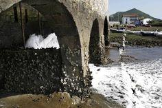 Molino de Marea de Jado, Argoños  -  El molino de marea es un artefacto que permite obtener energía de la diferencia de nivel de las aguas que producen las mareas o, con menor incidencia, de la propia corriente de las aguas en su entrada en los estuarios o marismas. Jado (Argoños)
