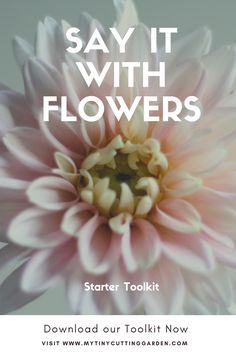 Arrange your own bouquets to give. What could be more fun? Download this toolkit to get started now.