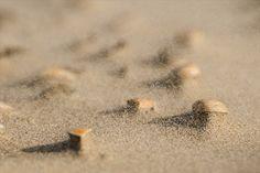 #storm #sand #weather #zand #wind #boenderpint