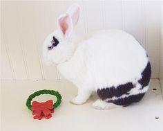 Sisal Christmas Wreath Rabbit Toy : Pet Rabbit Toys, Homemade Toys for Rabbits