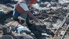 Yacimiento en el que se encontraron los huesos de mastodonte en 1992