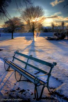 Frosty Park Bench... by Light+Shade [spcandler.zenfolio.com], via Flickr