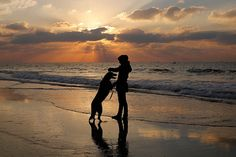 A Palestinian girl plays with her dog at sunset in Gaza City