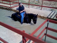 horse obstacle course - Woah.. I would love to teach my horse to go through water like this! Actually.. He already knows. So all I need is the water and I could have so much fun!