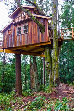 Looks like the treehouse guy built this. Beautiful Tree Houses, Cool Tree Houses, Beautiful Homes, Tree House Masters, Tree House Plans, Tree House Designs, Home Design Plans, Cabana, Play Houses