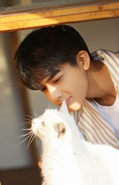 The luckiest cat in the world. I envy it Most Handsome Actors, Handsome Boys, Song Wei Long, Comic Tutorial, Cute Asian Guys, Asian Boys, Korean Drama Best, Bright Pictures, Cute Boys Images