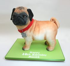 Pug dog birthday cake