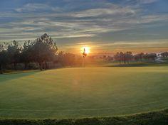 Green of Hole 8, Golf Course Son Gual Mallorca
