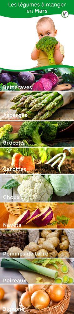 300 graines Thai Blanc Rond aubergine//Aubergine Légumes Délicieux cru ou Cook