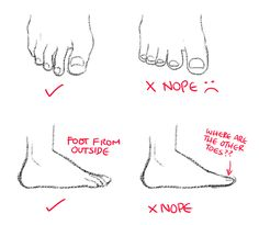 Art references and Resources, rflame135: kurisu004: How to draw feet