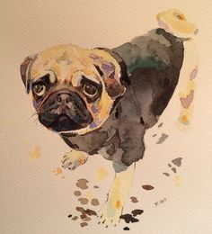 The Pug in the Jumper with the most Heartbreaking Eyes, 11.5in x 9in, Watercolour & Pen - Imgur