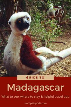 Volunteer's travel guide to visit Antananarivo, Madagascar: best activities & hotel. | wornpassports.com