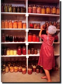 Amish Mennonite Life What is for Lunch? Amische Quilts, Amish House, Amish Family, Amish Culture, Amish Community, Amish Country, Amish Farm, Amish Recipes, Country Living