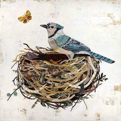 Dolan Geiman, Blue Jay Bird, Paper Collage Art, Paper Art, Paper Owls, Bird Prints, Painting, Art Print, Bird In Nest