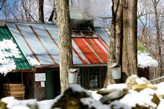 Pease Scenic Valley Maple Sugar House In Orford New