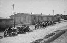 Jewish prisoners at forced labor in the Plaszow camp.