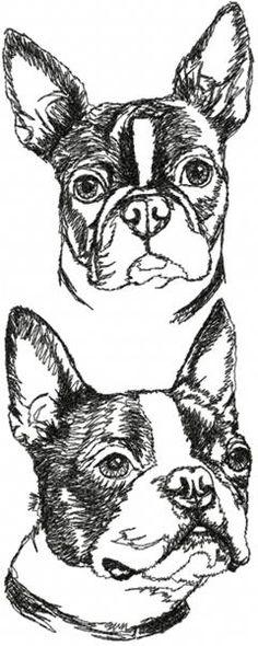 Boston Terrier Set