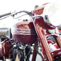 Triumph Addiction — nostalgia-virtuoso:   1953 Triumph Speed Twin. I...