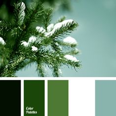 color matching in the interior, color of a pine branch, color of snow, dark green, dark green color, forest green, light green, menthol, mint, shades of green, spruce color, swampy green, warm shades of green.