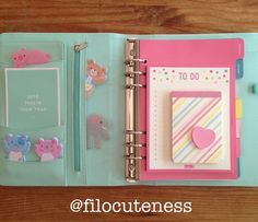 Filo Cuteness: Large kikki.K Leather Time Planner in Mint