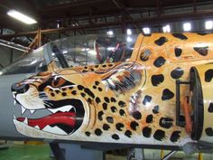 SAAF Museum Cheetah Iai Kfir, South African Air Force, Battle Rifle, Red Arrow, Cheetahs, Aeroplanes, Nose Art, Africans, African History