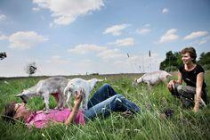 Even voor model spelen, nou ja, voor klimrek spelen is meer de waarheid, voor een artikel in HP De Tijd over wonen in De Blauwe Meije (24 juni 2011). Foto: Jean Pierre Jans