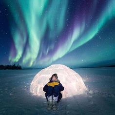 [[MORE]] 🌎 Yellowknife, North West Territories, Canada Yellowknife Canada, Nighttime Sky, Never Summer, Northern Canada, List Of Animals, Northwest Territories, Canada Travel, North West, Adventure Travel