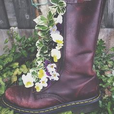 #BootsInBloom Shared by romypaters