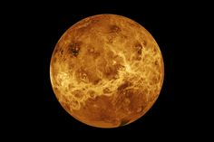 Our neighbor planet, Venus, has shown possible signs of life, according to scientists from Cardiff University.