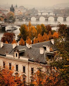 Fall in Prague                                                                                                                                                     More