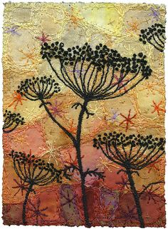 Autumn Umbels 3