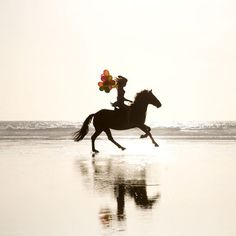 Every girls dream is to ride on a horse at the beach... This has just perfected that.